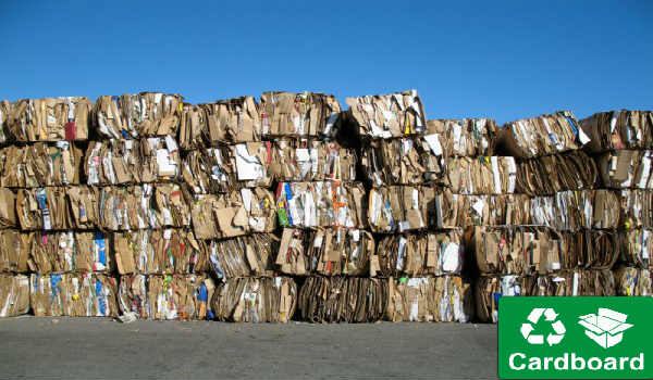 5 Reasons You Should Opt for Cardboard Recycling